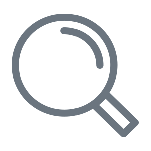 Digital Services Icon Search